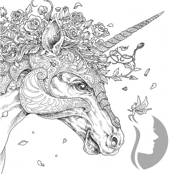 Mythomorphia kerby rosanes Majestic animals coloring book